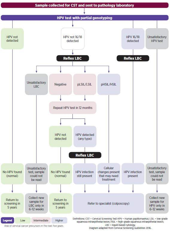 Cervical screening pathway
