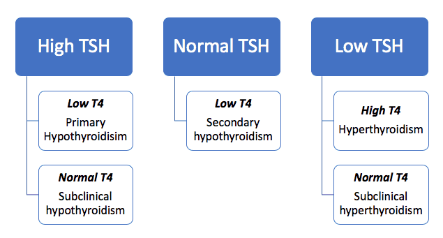 Interpreting TFTs