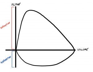 Flow Volume Loop - Normal